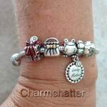 Updated Pandora Bead Charm Bracelet
