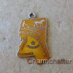 Vintage Wells Enamel Jewelry Mississippi Charm